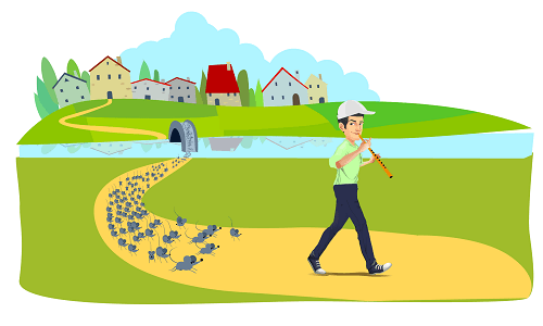 Residential pest control 9